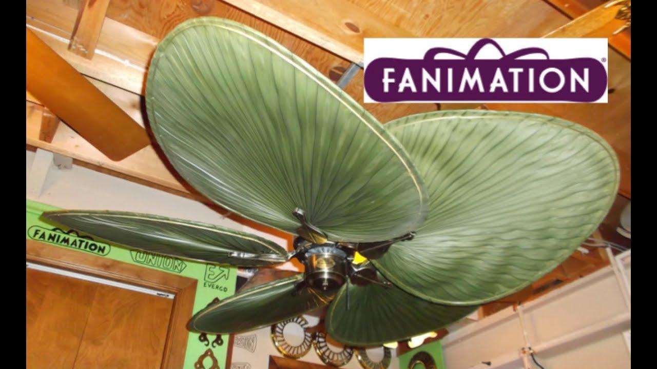 Fanimation islander ceiling fan youtube fanimation islander ceiling fan aloadofball Gallery