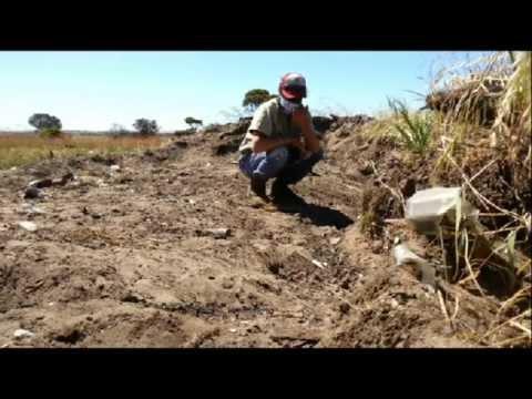 digging-&-raking-old-rubbish-tip-for-relics,-old-marbles-&-antique-bottles