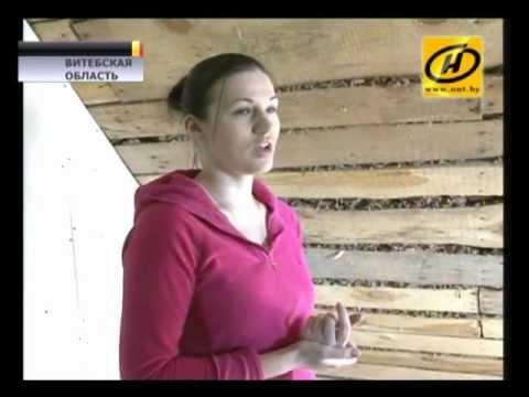 видео: Дом из щепы и глины. Так живут на Витебщине