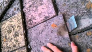 Asbestos tile repair