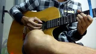 Nụ hồng mong manh - (acoustic guitar cover)