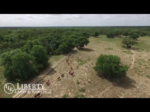 FOR SALE - South Texas Hunting Ranch - 590 Acres - Liberty Land & Ranch