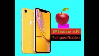 APPLE iPhone XR  Specs AND Price Has 6.1  Display