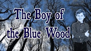 The Boy of the Blue Wood [a creepypasta]