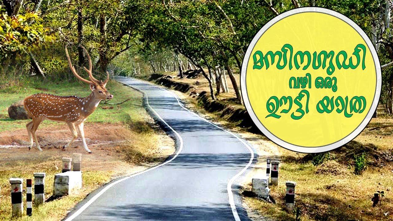 Download MASINAGUDI TO OOTY  I  ROAD TRIP  I  MALAYALAM TRAVEL VLOG