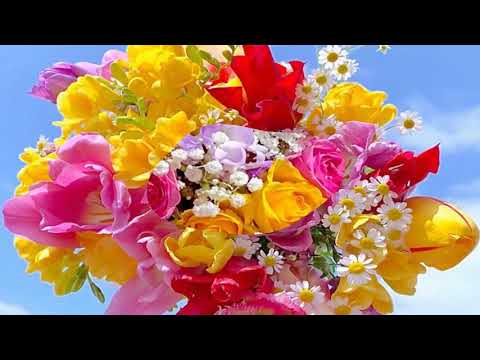 Flowers For You! (HD1080p)