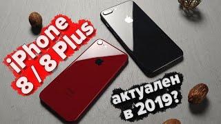 iPhone 8 / 8 plus в 2019. Стоит ли сейчас покупать айфон 8/8 плюс?