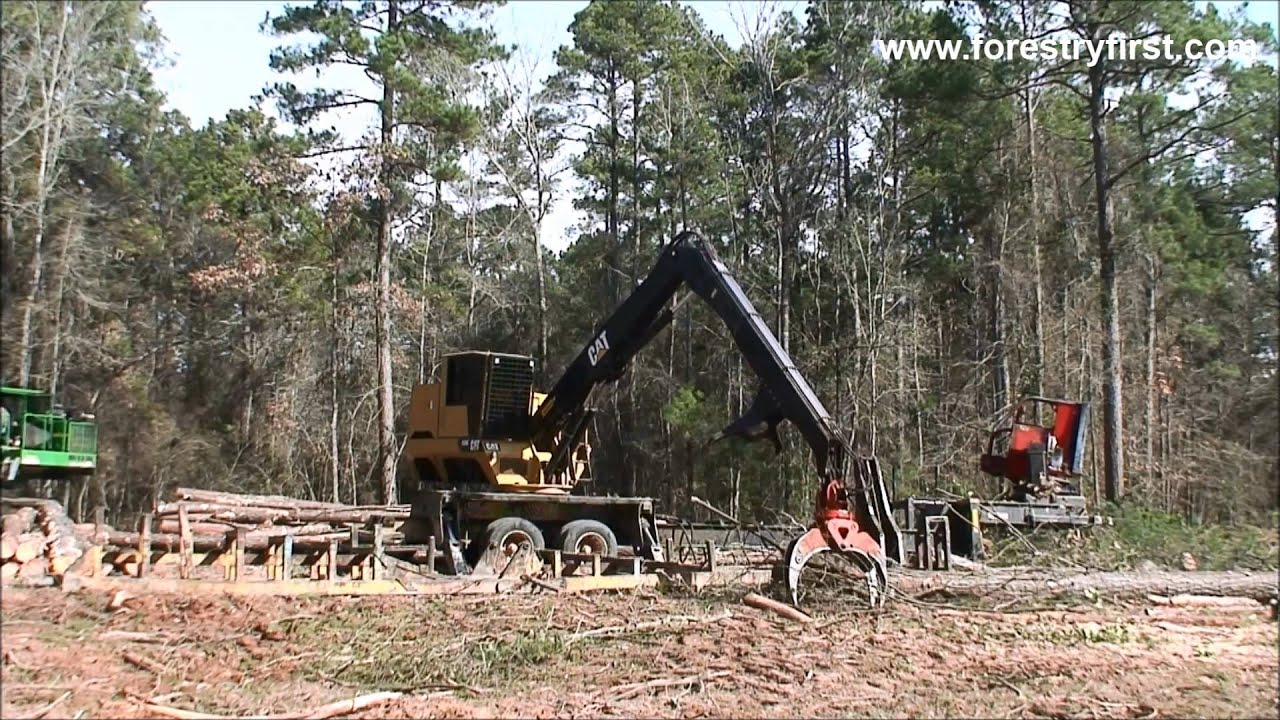 2014 CAT 559C Knuckleboom Loader with 1500 Hours at Forestry First