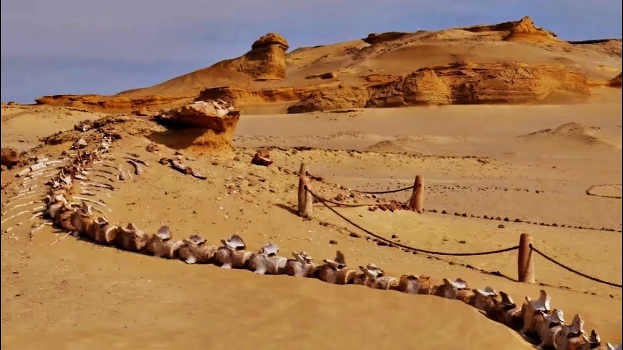 8 COISAS ESTRANHAS ENCONTRADAS NO DESERTO