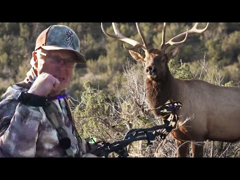 Bow Hunting NM Elk – Willi calls a BIG character bull to 18 yards! (Pure Hunting)