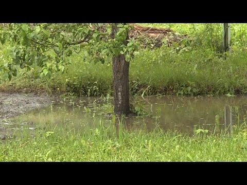 Жители Шацкого района рассказали подробности паводка