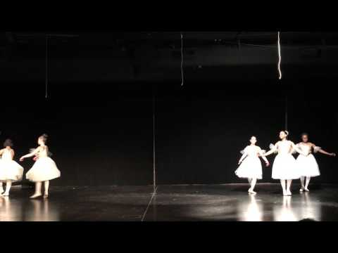 Swan Lake ~ Above The Clouds Level 6/7 Ballet Students