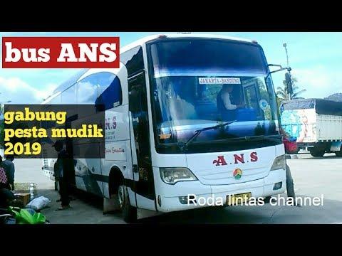 Bus ANS Sang Senior Ikut Gabung Bawa Penumpang Mudik Lebaran 2019.