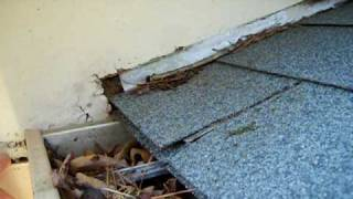 Durham Home Inspector Shows Missing Kickout Flashing