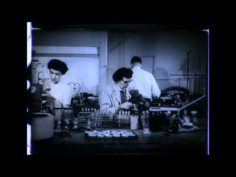 General Electric Women in Science - 1954