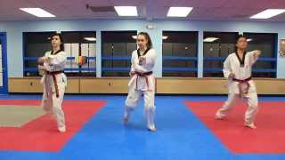 Taekwondo Basic Form 1(Taekwondo Basic Form 1 Guide. Filmed in J.Y. Moon TKD studio in Westchester NY. Instructed by Grandmaster JY Moon. Click HD!, 2014-02-24T21:50:24.000Z)