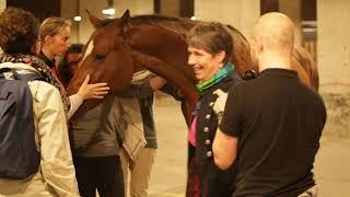 """Conférence à Darwin Ecosystème """"Le cheval un Homme comme les autres"""" - 24.10.2019"""