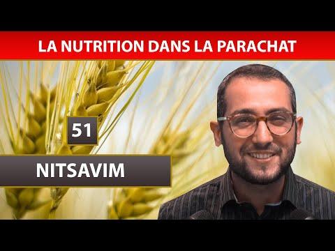 NUTRITION DANS LA PARACHAT 24 - NITSAVIM 51 - Shalom Fitoussi