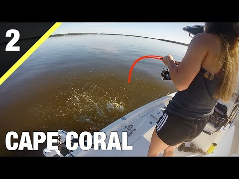 Fishing CAPE CORAL With LIVE SHRIMP ( Florida 2020 Part 2 )