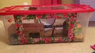 Making A Diy Hamster Cage (bin Cage)