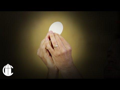 Catholic Sunday Mass: 11/10/19 | Thirty-Second Sunday in Ordinary Time