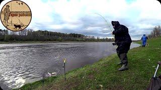 НЕОЖИДАННЫЙ БОНУС.Рыбалка на донку и поплавок на быстрой реке.
