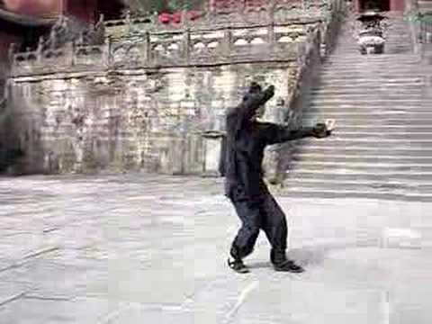 Wudang Xingyi 5 Elements Linked Set
