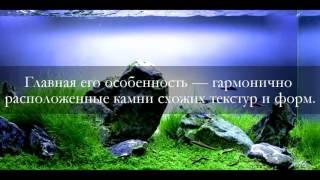 Как украсить аквариум своими руками: стили оформления.(Наш сайт aquariumbar.ru., 2016-07-15T17:16:03.000Z)