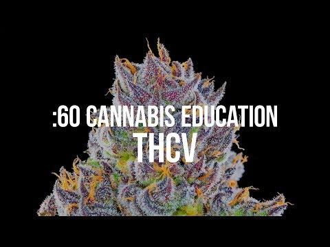:60 Cannabis Education - THCV