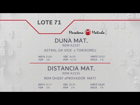 LOTE 71 Maratona Matinha
