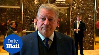 Al Gore says meeting with Donald Trump was 'very interesting' - Daily Mail
