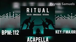 Tiësto, Jonas Blue & Rita Ora - Ritual (Acapella)