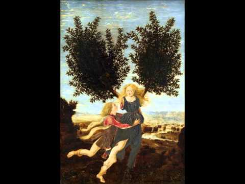 The Story Of Apollo & Daphne