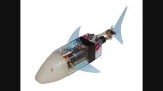 PHORCYS 571 K.R.S (biomimetic robotic fish)