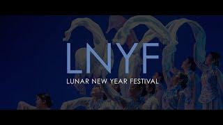 Lunar New Year Festival: A Holiday Greeting
