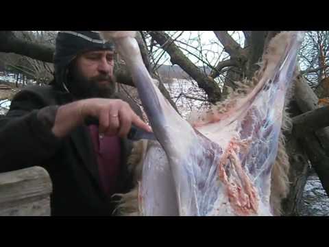Забой барана. А сколько вышло мяса?