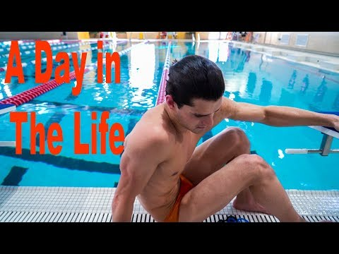 A Day in The Life of a World Champion