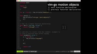 vim-go: text motion objects