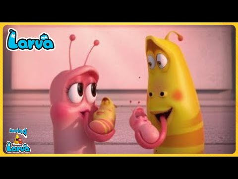 The Larva Girls Compilation�� Fun Clips from Animation LARVA ��Larva Official �� Cartoon Comedy 2020