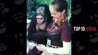 viral video of the Day | Daily Dose Of Internet  | Top 10 viral