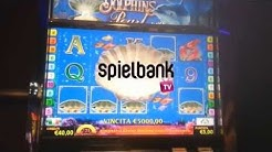LIVE ECHTGELD 5 Scatter Spielbank Dolphins Pearl