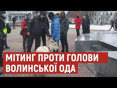 Суспільне Волинь: