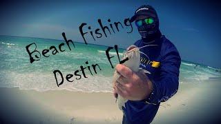 Beach fishing for sharks in Destin Florida