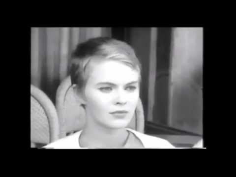 Pussy The Fapppening Jean Seberg  nude (88 pics), Facebook, braless