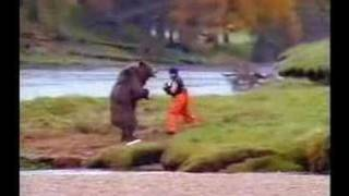 a man kick a bear in the balls