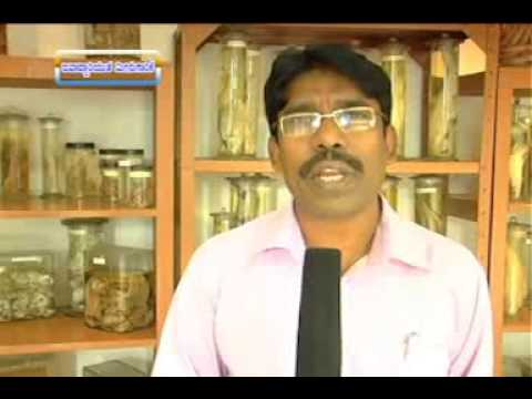 26 02 2014 responsible fishery dr h n anjaneyappa and vaccination programme against FMD dr d m das