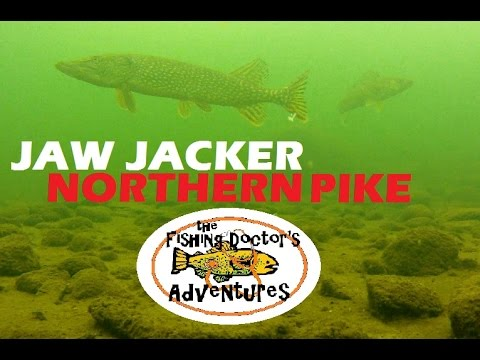 Shocking Underwater Jaw Jacker Northern Pike Friday the 13th