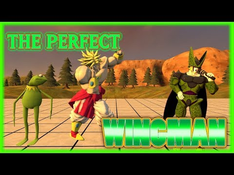 The Perfect Wingman