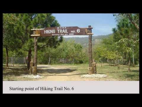 Hiking Trail 6 Margalla Hills Islamabad Pakistan
