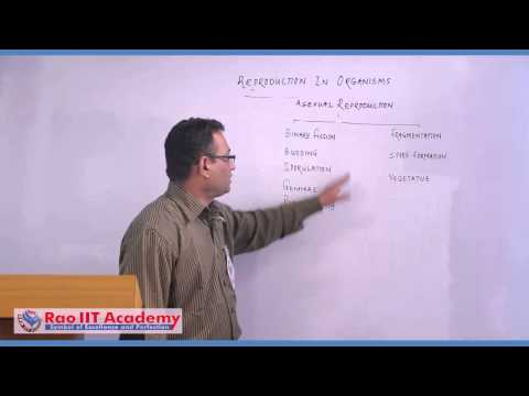 Asexual Reproduction - NEET AIPMT AIIMS Botany Video Lecture [RAO IIT ACADEMY]